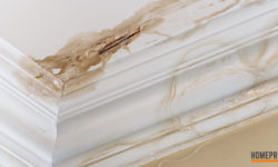 Dealing with Water Damage in Wyandotte Michigan
