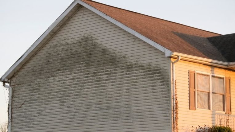 Key Reasons Why You Need Siding Repair in Plymouth Michigan After a Storm