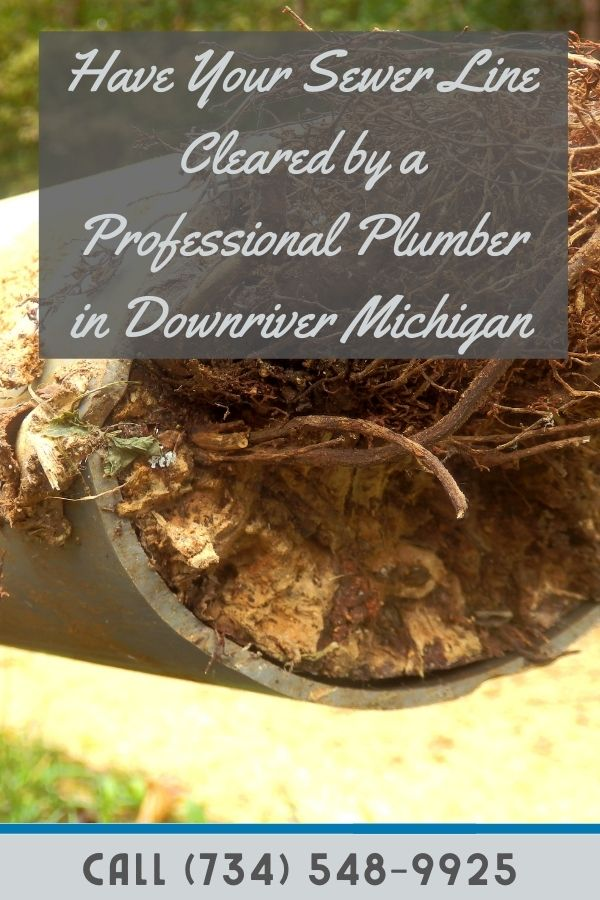 Plumbing Rooter in Downriver MI
