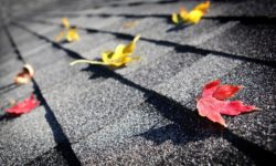 Save on Expenses When Your Home Needs Roof Repair in Dearborn Michigan